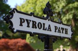 Pyrola_path
