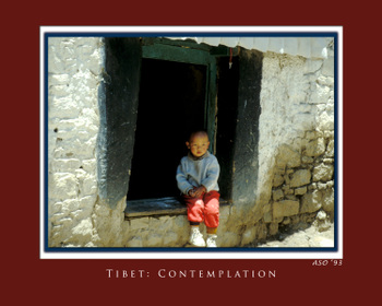 Tibet_contemplation_copy